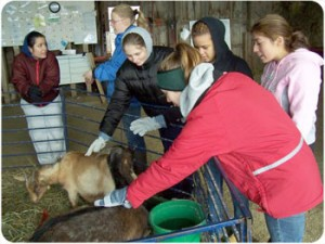 students with animal